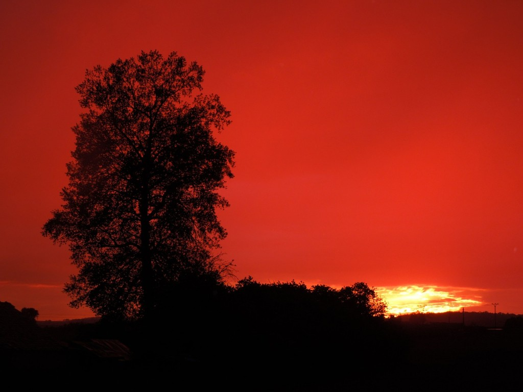 sunset-383232_1280